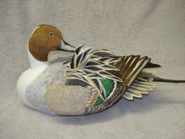 Waterfowl Decoy